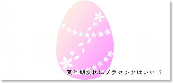 胎盤イメージ